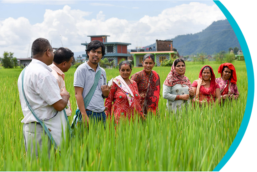 Invest in Public Agricultural Research, Development and