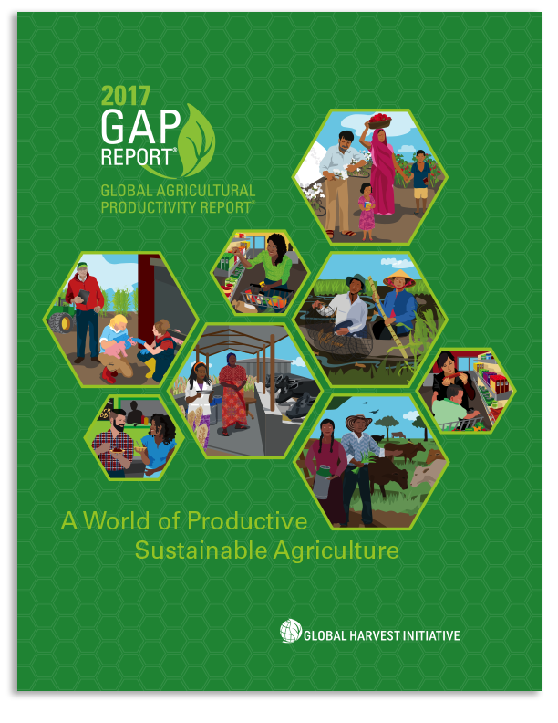 Cover for 2017 GAP Report.