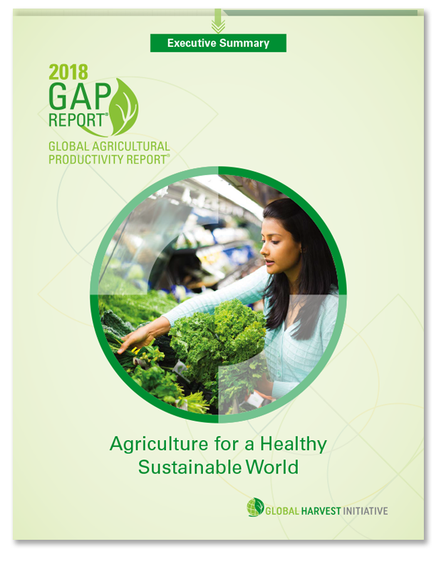 Cover for 2018 GAP Report.