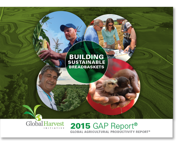 Cover of the 2015 GAP Report.