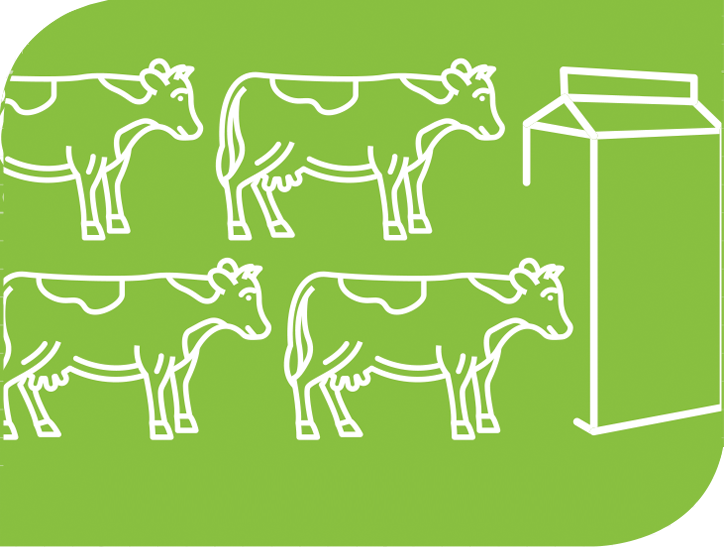 A graphic of cows and milk.