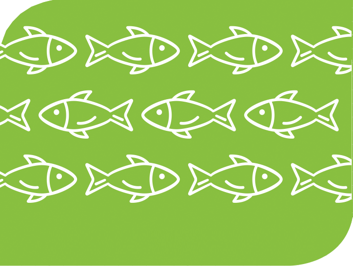 A graphic of fish.