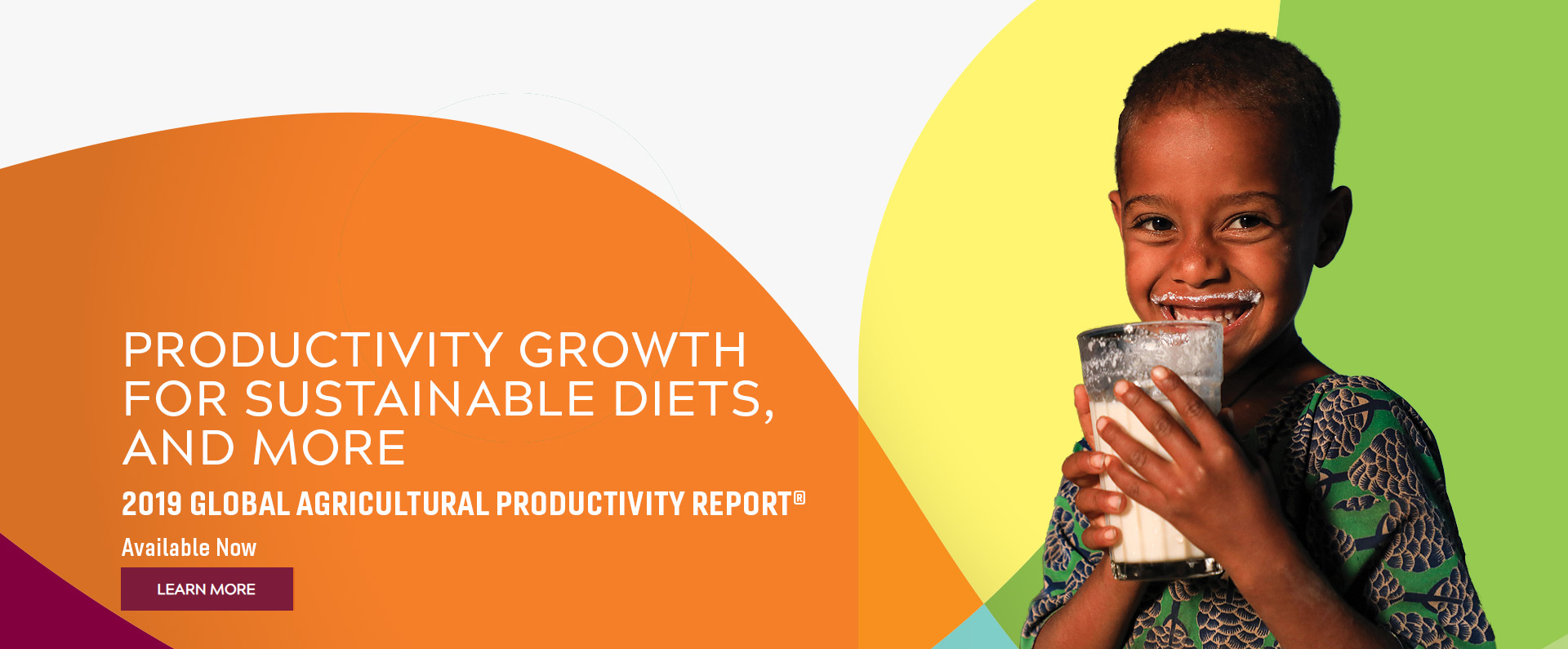 "The 2019 GAP Report cover image, with the words ""Productivity Growth for Sustainable Diets, and More. 2019 Global Agricultural Productivity Report Available Now, Learn More."""