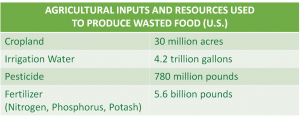 Agricultural inputs and resources used to produce wasted food (U.S) chart.