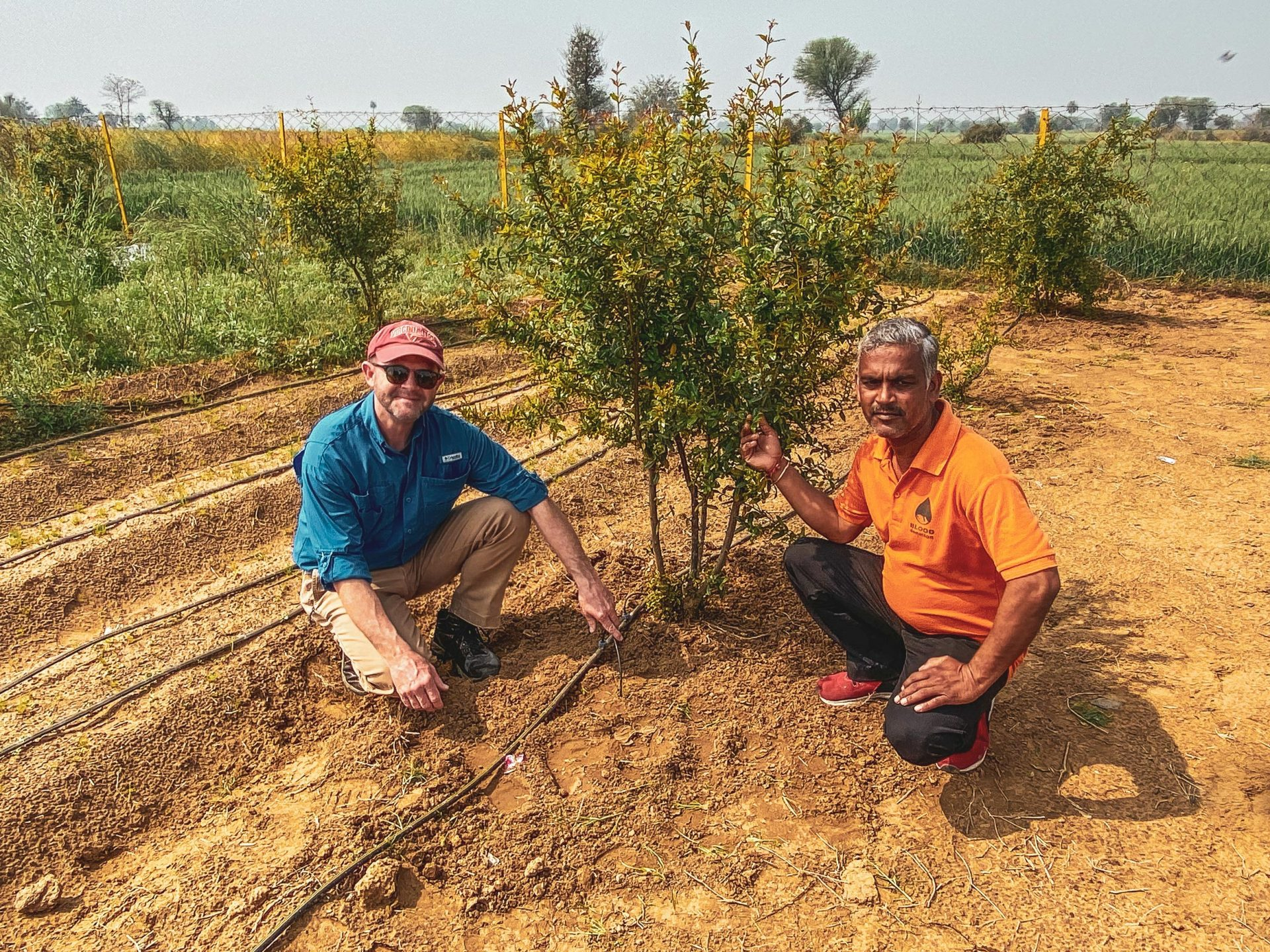 Two men pose in a field next to a pomegranate bush.