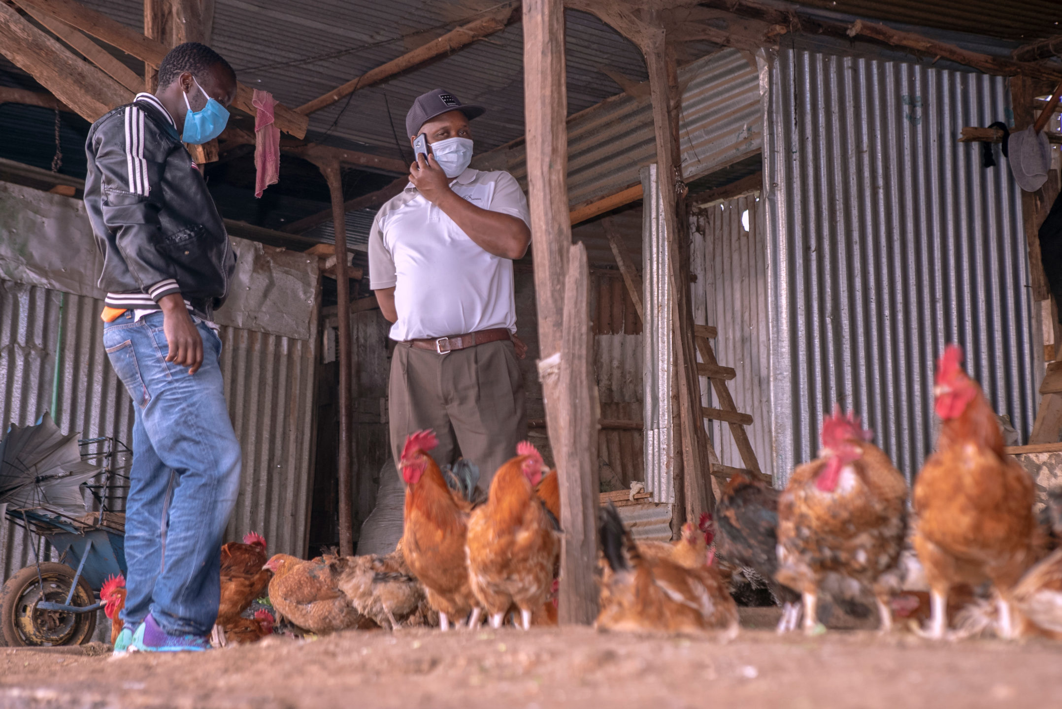 Two men standing and talking with chickens in the foreground.